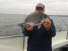 Game & Sea Angling Section - Catch of the Day!